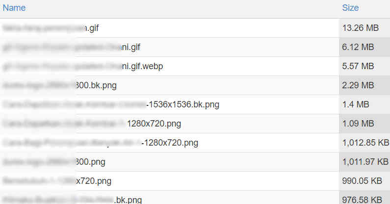 Big Sized Media Files in cPanel File Manager